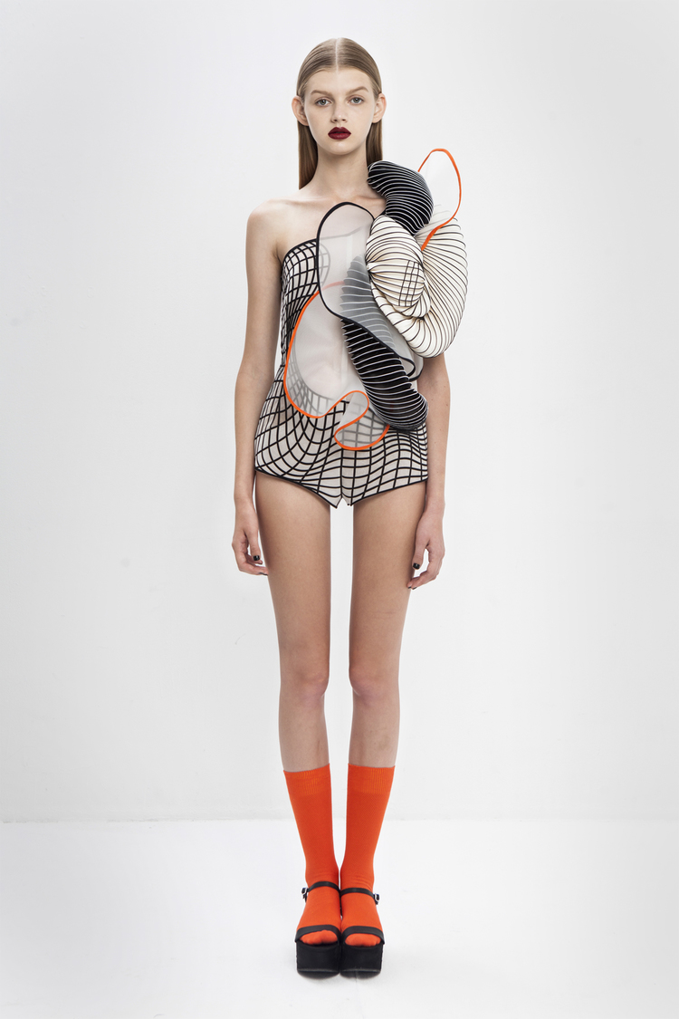 Hard Copy 3D Printed Dresses by Noa Raviv