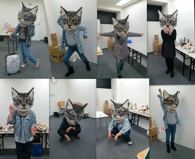 Giant cat head collage