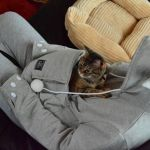 The Mewgaroo Hoodie, A Cozy Sweatshirt With a Cat-Sized Pouch So Kitties Can Snuggle Inside