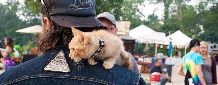 Party Cat on Pat's Shoulder