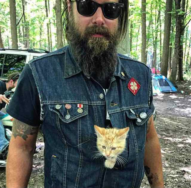 Pat and Party Cat