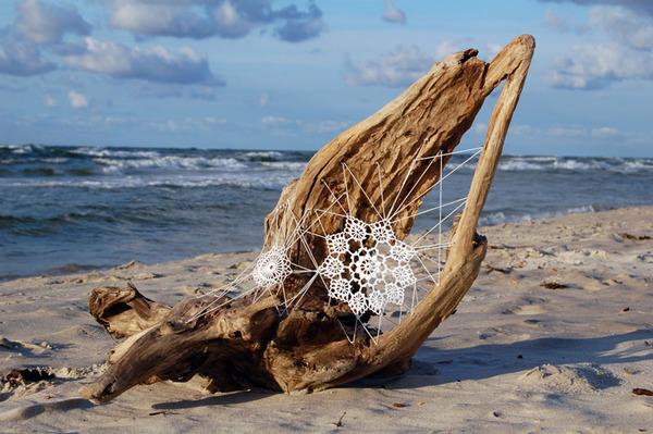 Driftwood Doilies