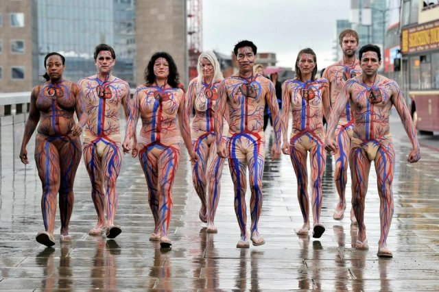 Circulatory System Body Art