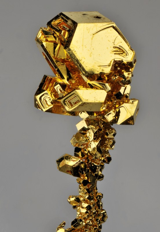 Gold Cat Ear Ring