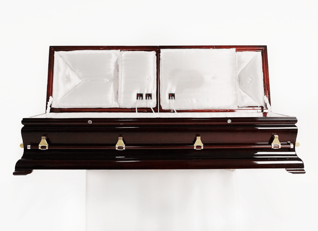 CataCombo Coffin Stereo System