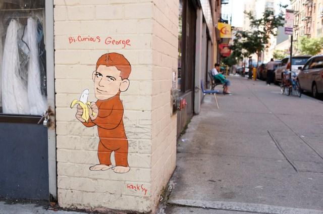 Bi-Curious George