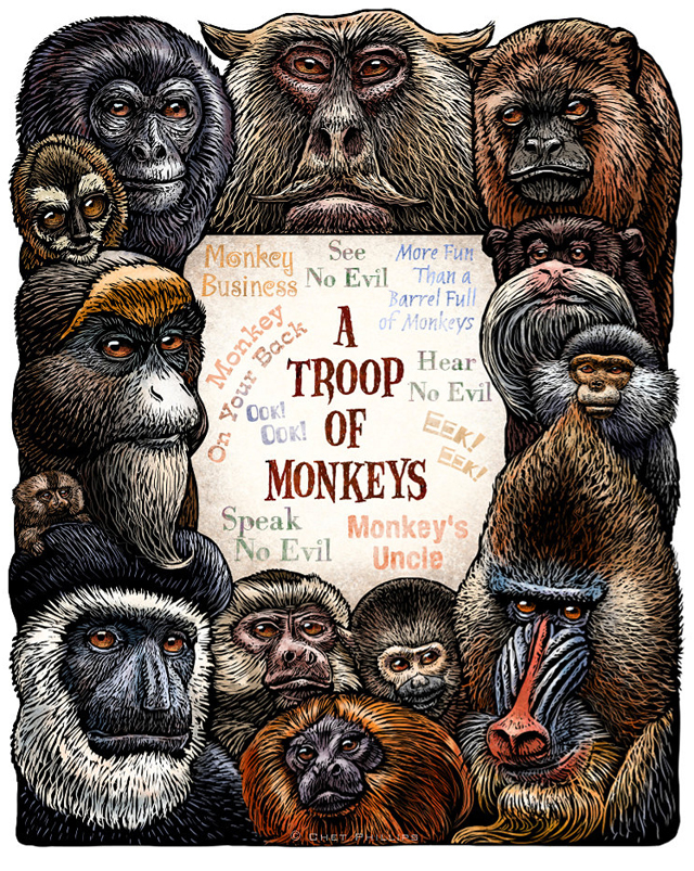 A Troop of Monkeys by Chet Phillips
