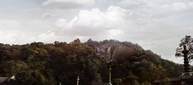 Biggest Cat In The World by Manuel Archain