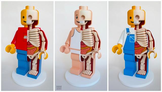 LEGO Men Dissections