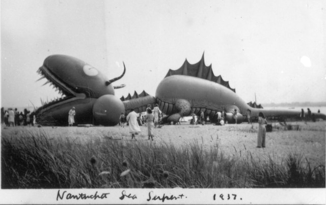 Tony Sarg's Sea Serpent balloon for the Macy's parade at rest on a Nantucket beach
