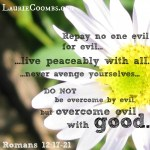{Lessons Learned} Overcoming Evil with Good Words