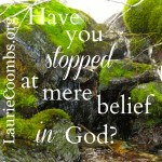 Have You Stopped at Mere Belief in God?