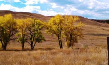 Fall 2011 in Denver