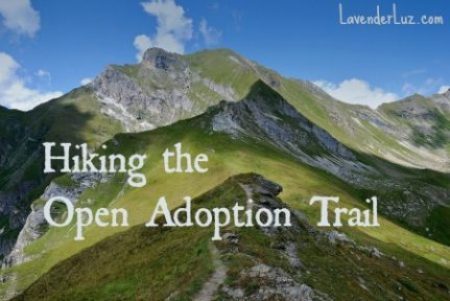 """I am a Birth Grandmother Walking the Open Adoption Trail"""
