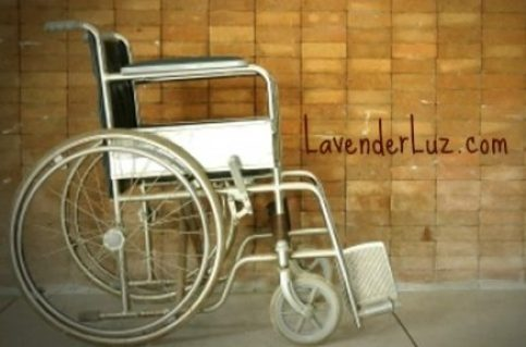 The Year of the Luz 2015
