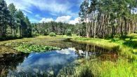 La Via di Mezzo al 11° Torneo del Renon! Due fantastiche giornate nei boschi del Renon, fantastici al sole (1° giornata), ma anche sotto la […]