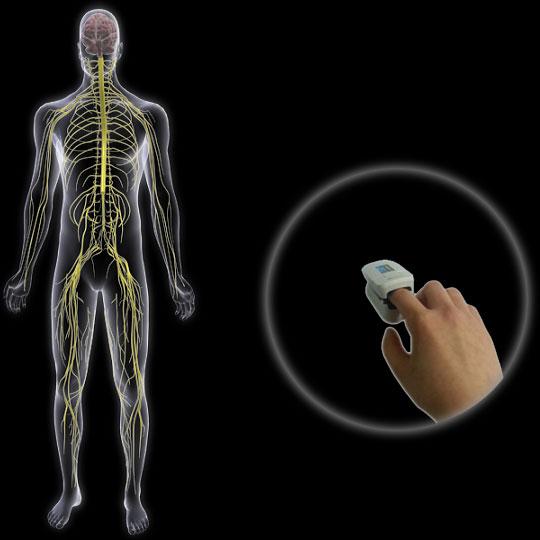 ubpulse-autonomic-nervous-system