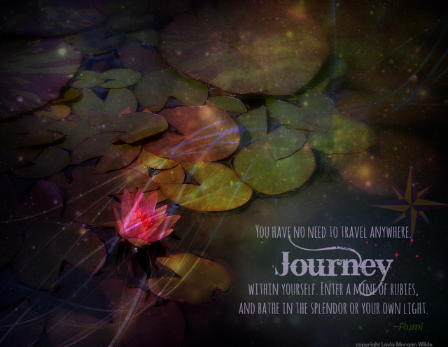 Quotes By Rumi Travel Rumi quote travel brings power and love #2: waterlilies pond quotes rumi travel