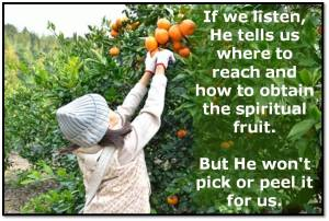 Picking Spiritual Fruit