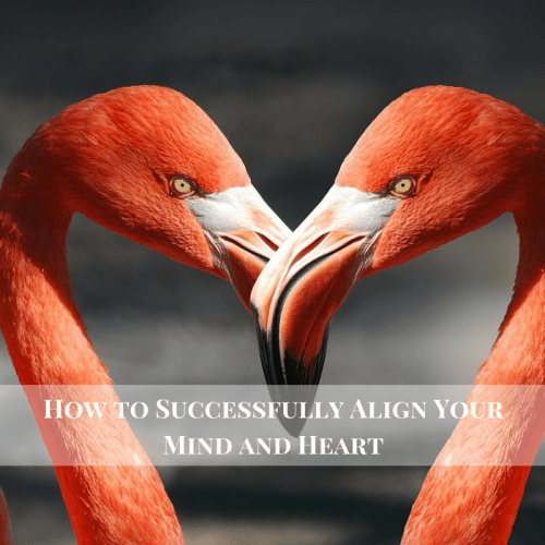 How to Successfully Align Your Mind and