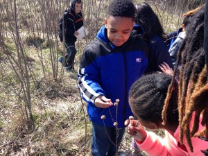 With field trips, kids can have outdoor experiences during school hours.