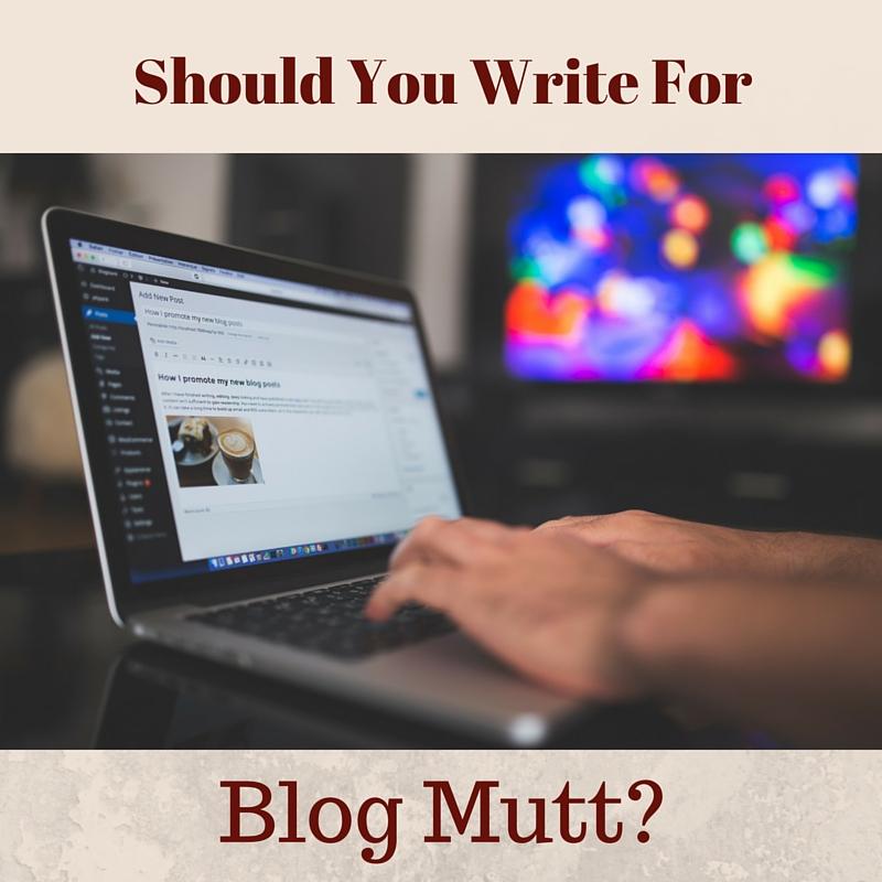 Blog Mutt Review