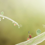 Botanicula: The Return Of Creative Adventure Games