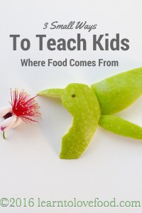 Pinterest 3 small ways to teach kids where food comes from
