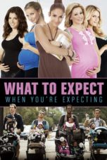 Nonton Movie What to Expect When You're Expecting Sub Indo
