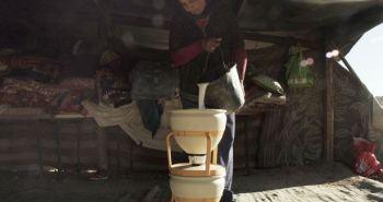 sahar appareil uv sterilisation lait