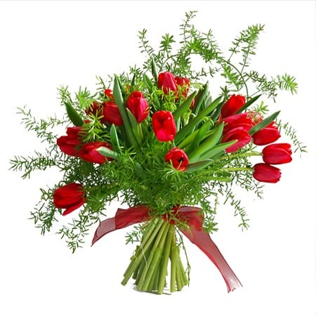 bouquet-tulipe-passion-bn