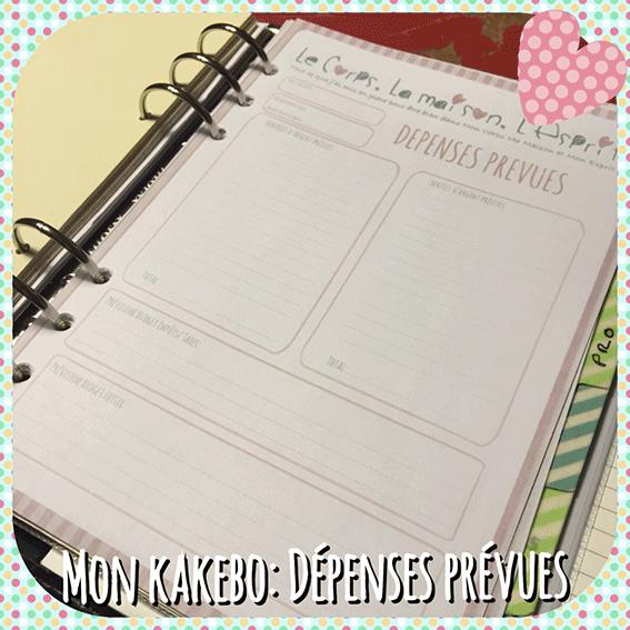 DANS-MON-FILOFAX-#2_-DANS-MON-KAKEBO-DEPENSES-PREVUES