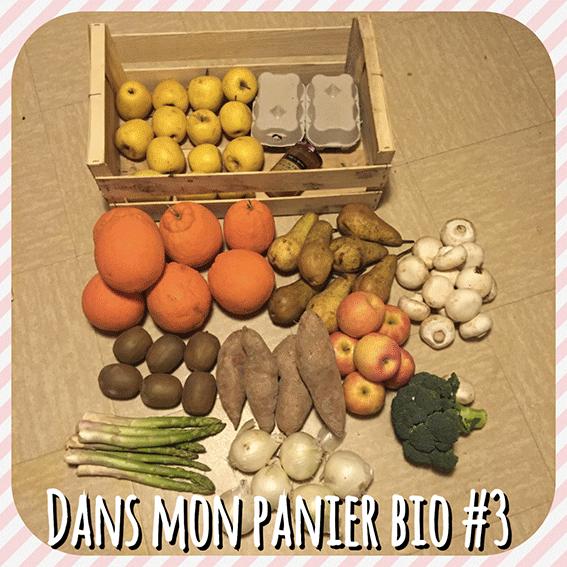 DANS-MON-PANIER-BIO-#3