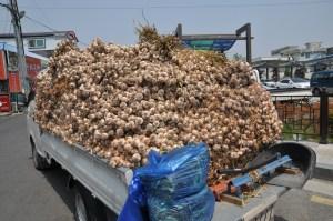 garlic truck