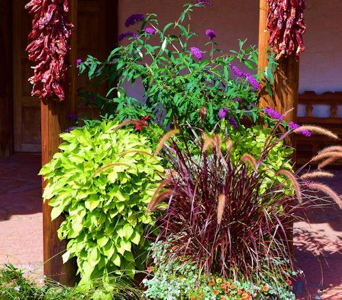new mexico custom courtyard