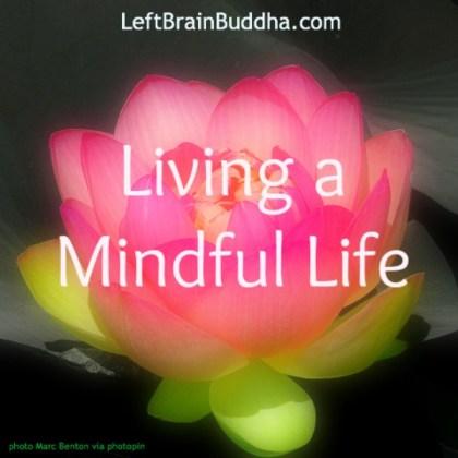 Living Mindful Life