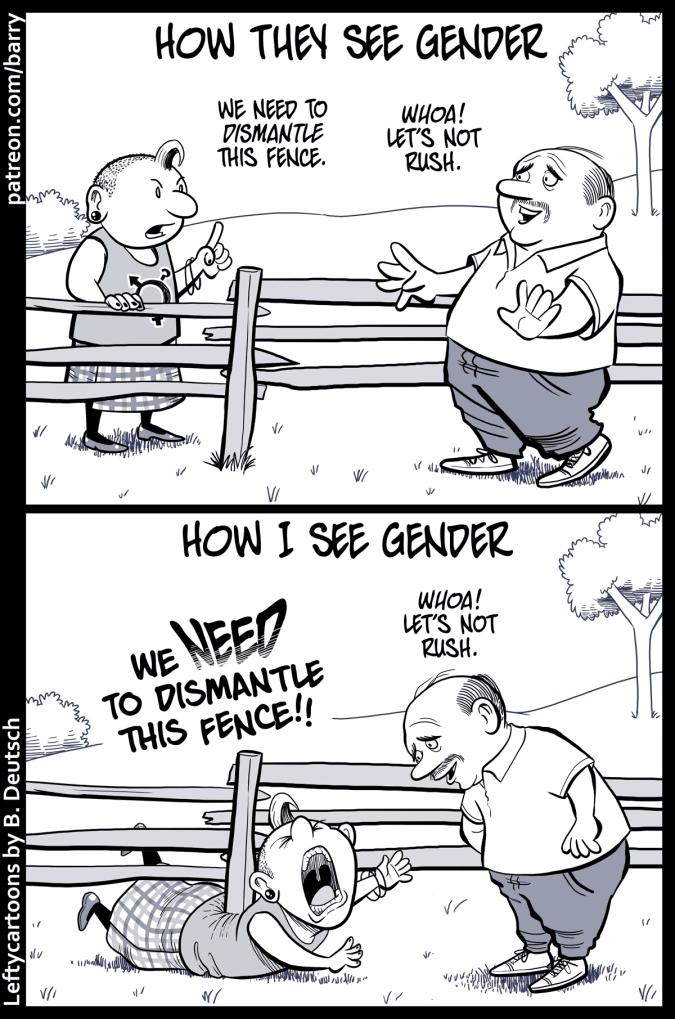 gender-fence-1200