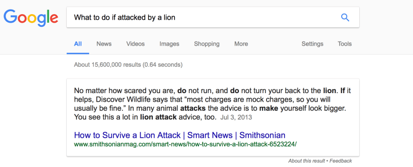 what-to-do-if-attacked-by-a-lion