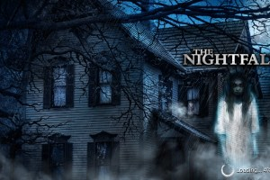 Leah Looks at: The Nightfall