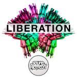 liberation_on_qsat_sim card_cccam