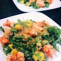 Arugula Salad with Shrimp, Mango, Avocado, Cilantro, Red Onion and Toasted Coconut :: Guest Post