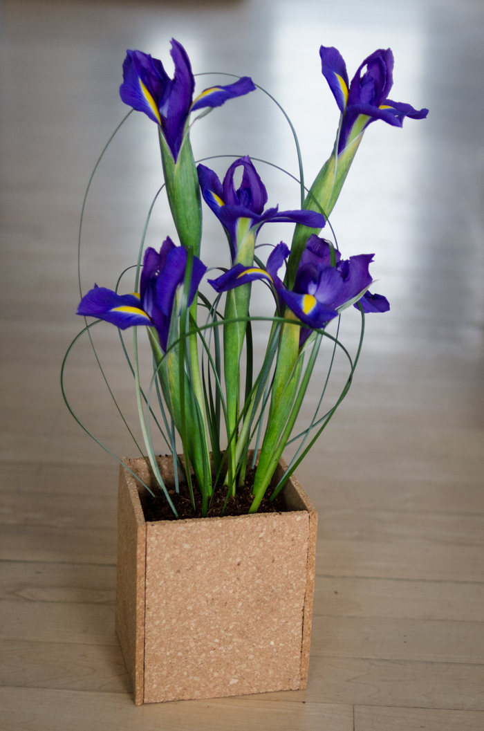 DIY Spring Iris Arrangement - lemonthistle.com