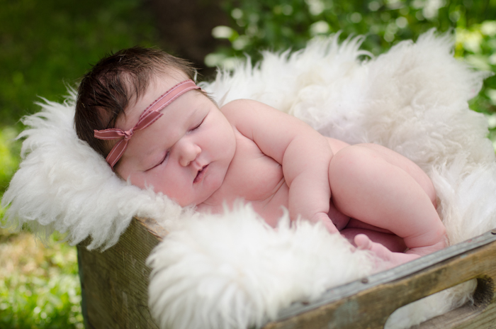 Newborn Photography - lemonthistle.com