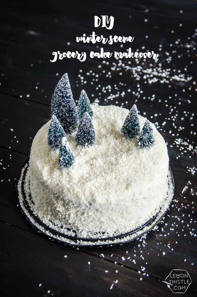 DIY Winter Scene Cake Makeover- perfect for the holidays!
