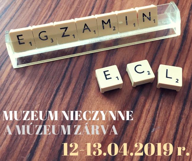 MUZEUM NIECZYNNE-2
