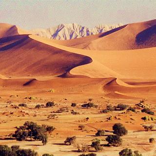 photo_desert_namib