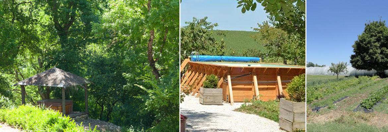 Spa, piscine et potager des cabanes dans les arbres de Brassac