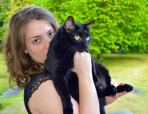 dentelle pomm poire pyjama midnight porté les deboires de carlita chat noir