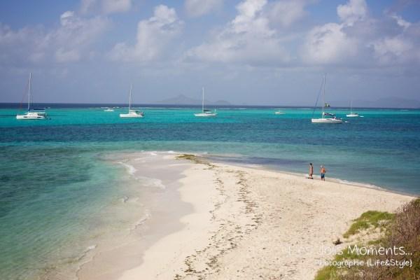 Tobago Cays 1