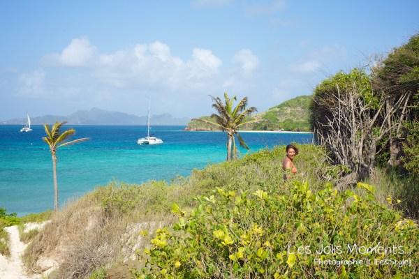 Tobago Cays 13